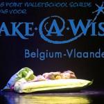 Dansen voor Make a Wish (Nieuwe datum!)